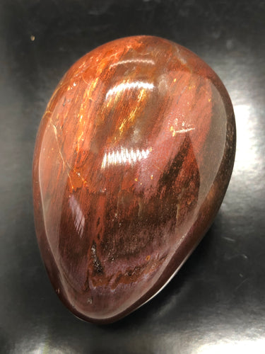 Petrified Wood Egg (Large) ~ grounding, integration, faith, I amness & balance (17)