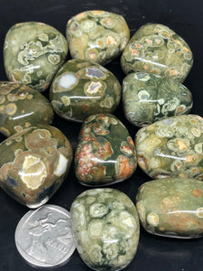 Rainforest Jasper | Rhyolite Tumbles ~ change, positivity, love & creativity