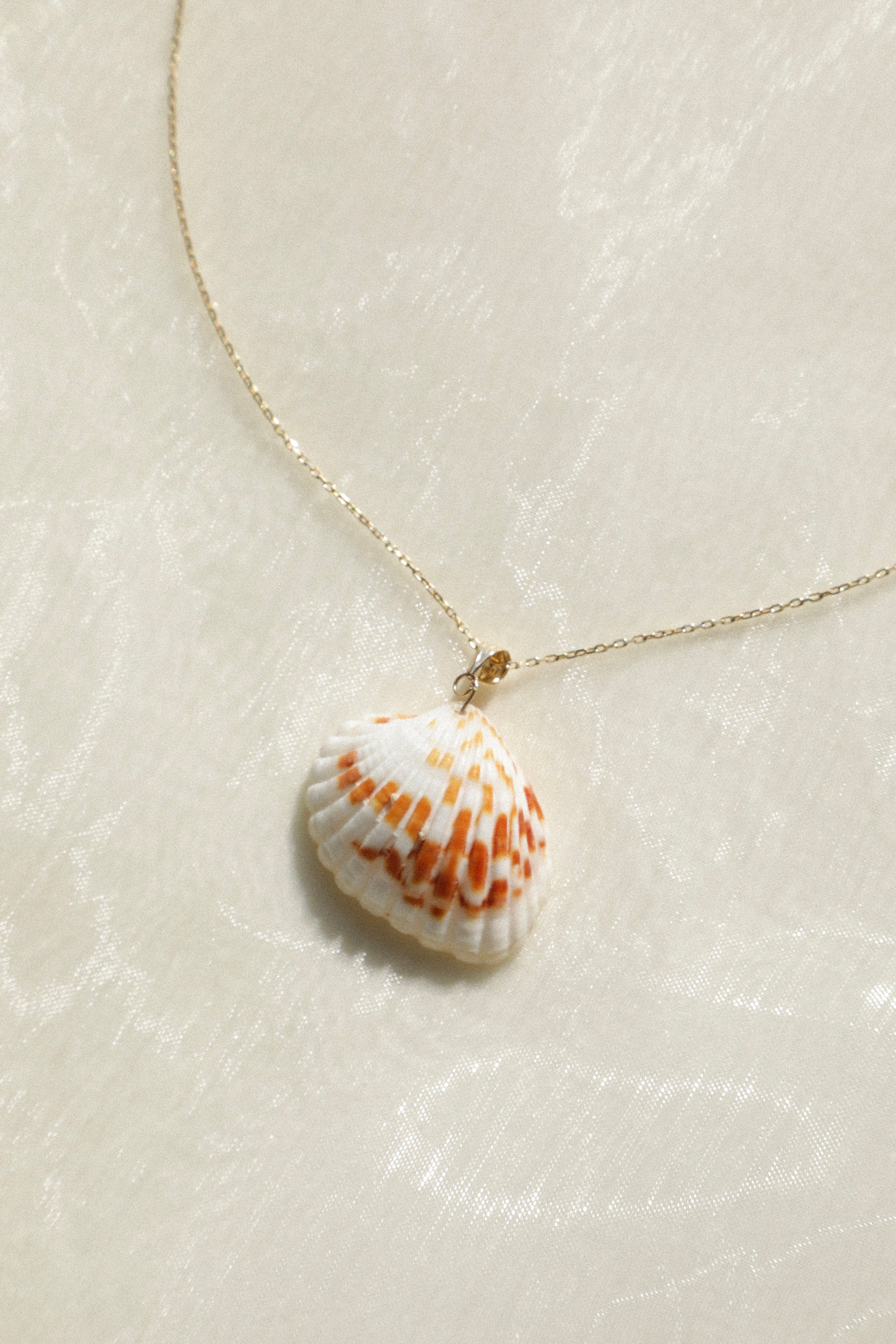 Maris Shell Pendant
