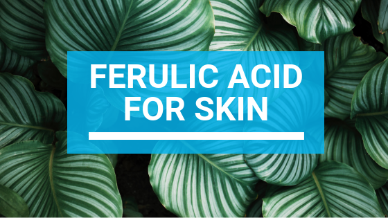 Ferulic Acid For Skin