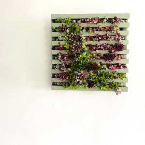 Living paintings, getting plants vertical, handmade in Kildare