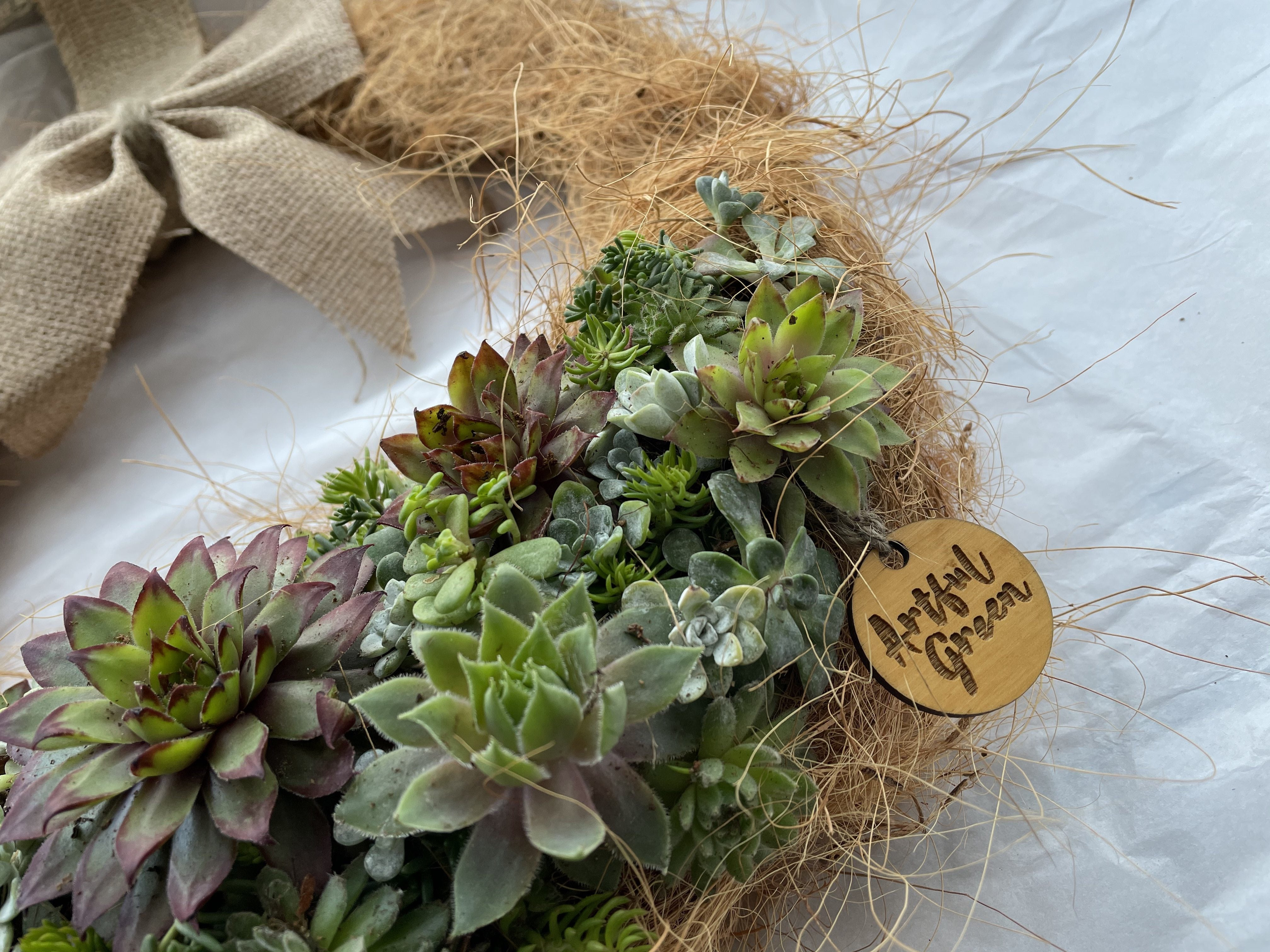 Our Living Wreaths are ever evolving, filled with Sedums and Sempervivums to keep you entertained through the seasons.
