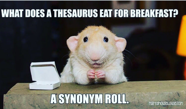 Like bad jokes? Here's a groaner, and a cute rat.