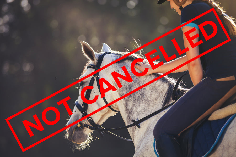 Loving Horses is NOT Cancelled