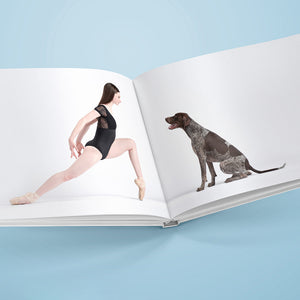 Dancers & Dogs, the hard cover book