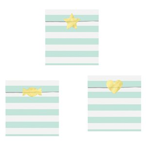 Mint Green Treat Bags Set of 6