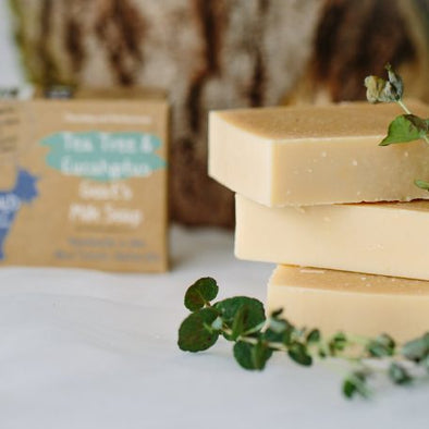 Tea Tree & Eucalyptus Goat's Milk Soap