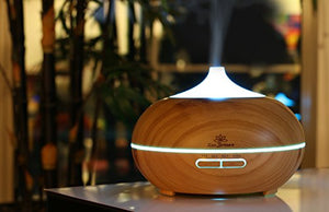 Zen Breeze Essential Oil Diffuser, 2019 Model Aromatherapy Diffuser