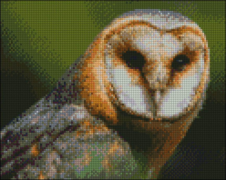 Owl on Green