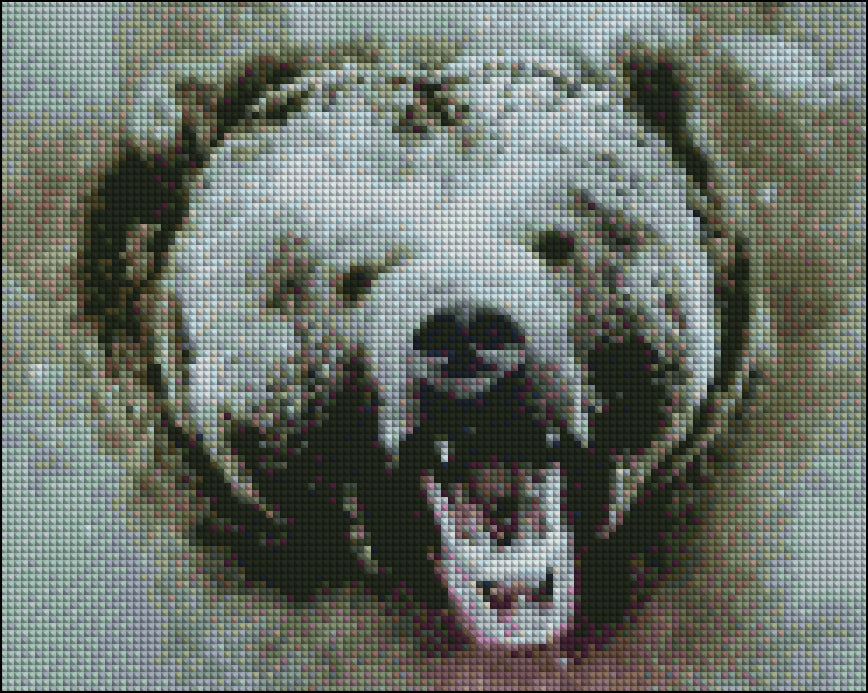 This is the same photo of the bnw bear but in diamond painting canvas.