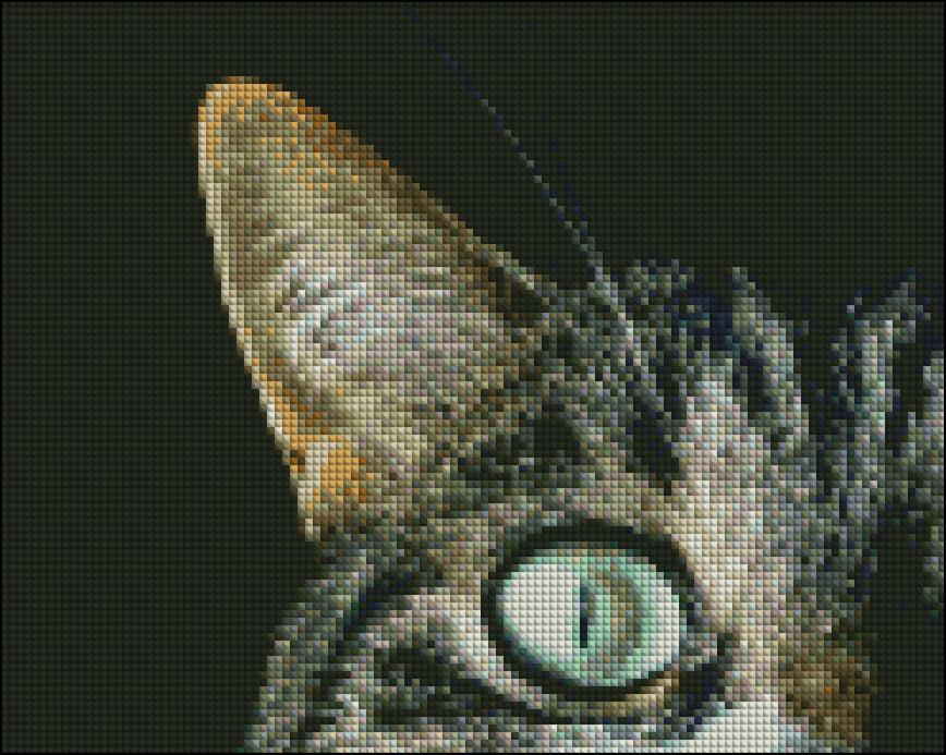 This is a photo of the Cat Eye in a diamond painting canvas.