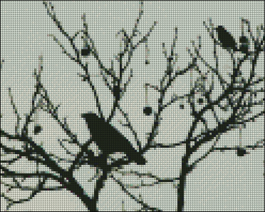 Black Bird Tree