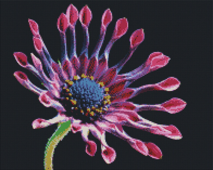 African Daisy - Shimmer Stitch