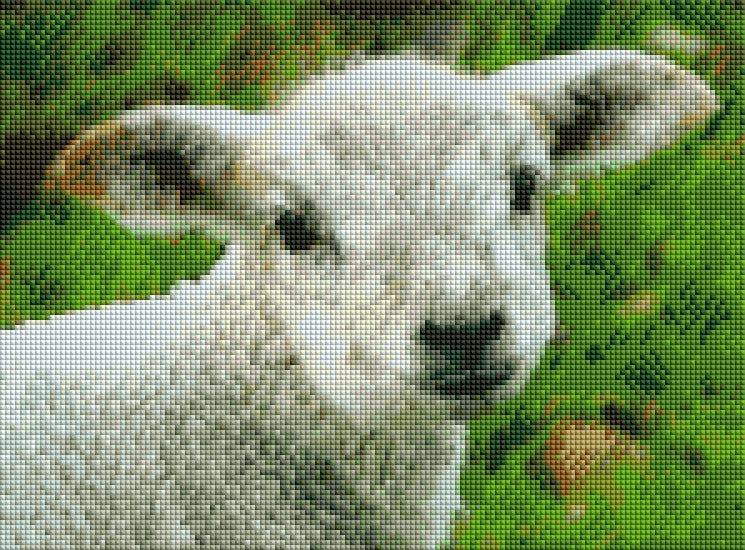 Baby Sheep - Shimmer Stitch