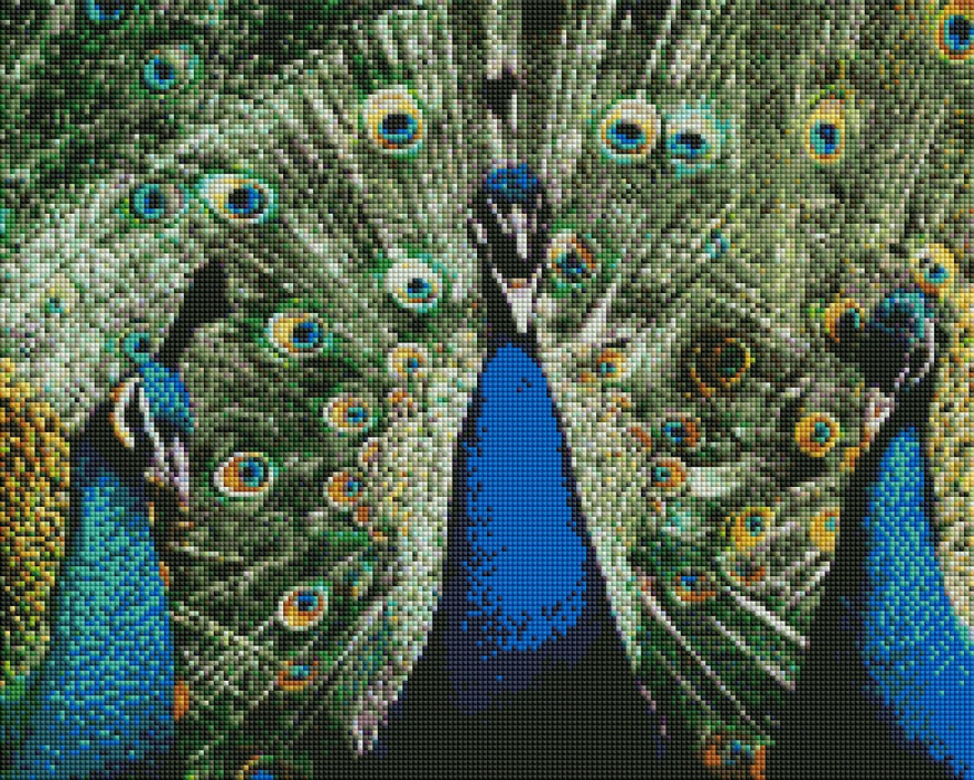 Three Peacocks