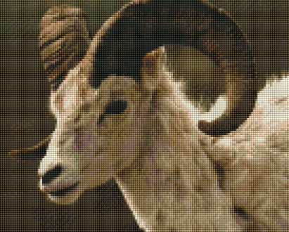 Big Horn Sheep - Shimmer Stitch