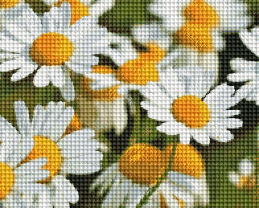 Chamomile Flowers - Shimmer Stitch