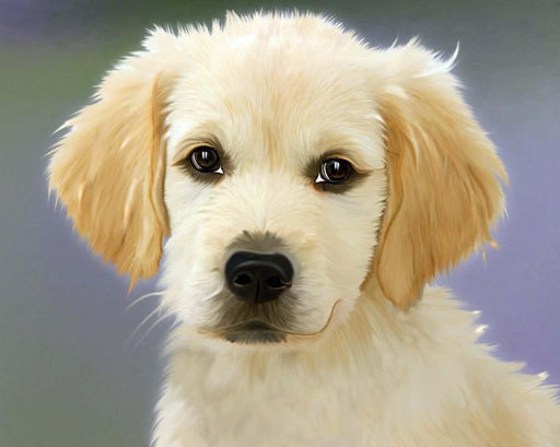 This is a photo of an adorable white puppy