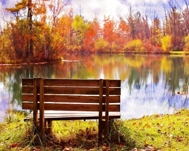 This is a photo of a wooden bench on the riverside on autumn.