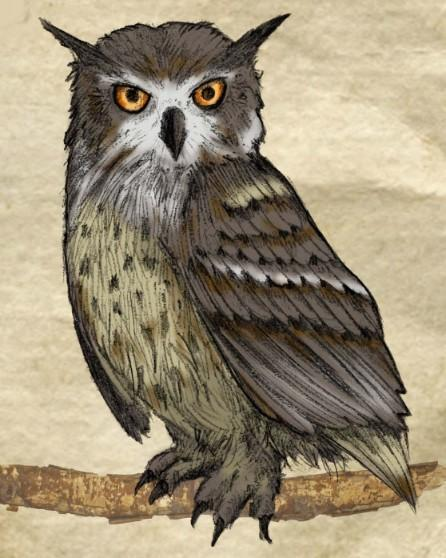 This is a photo drawing of a brown owl on a tree branch