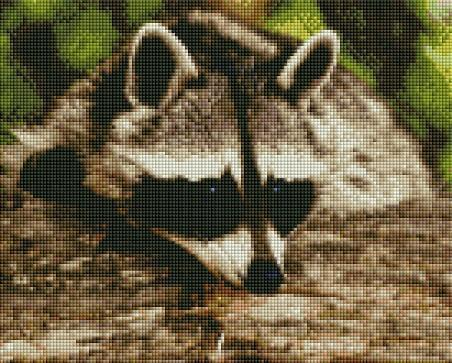 Cute Raccoon - Shimmer Stitch