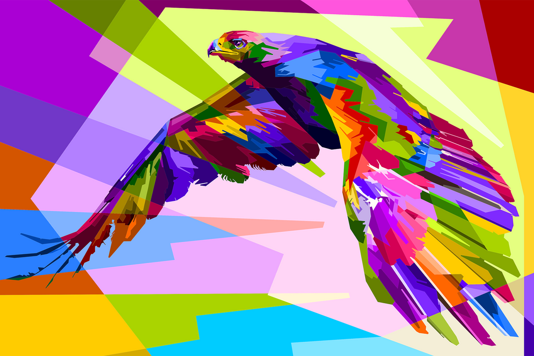 Colorful Flying Eagle