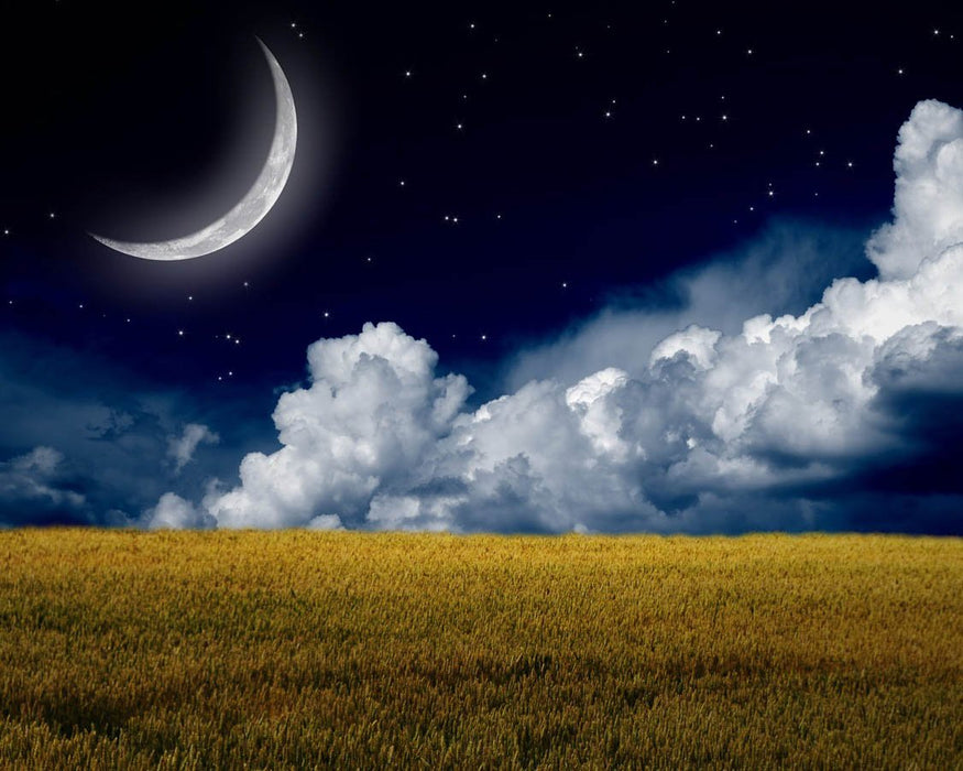 This is a photo of a crescent moon over a wide green grass field.