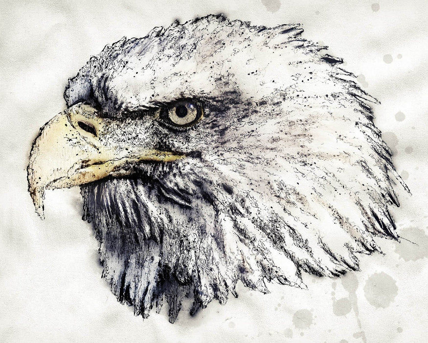 Drawn Eagle
