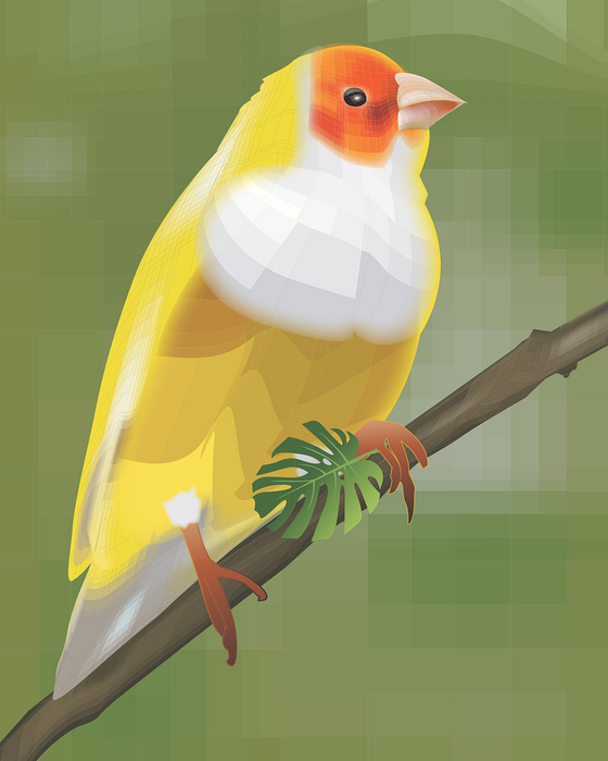 Yellow Bird Art