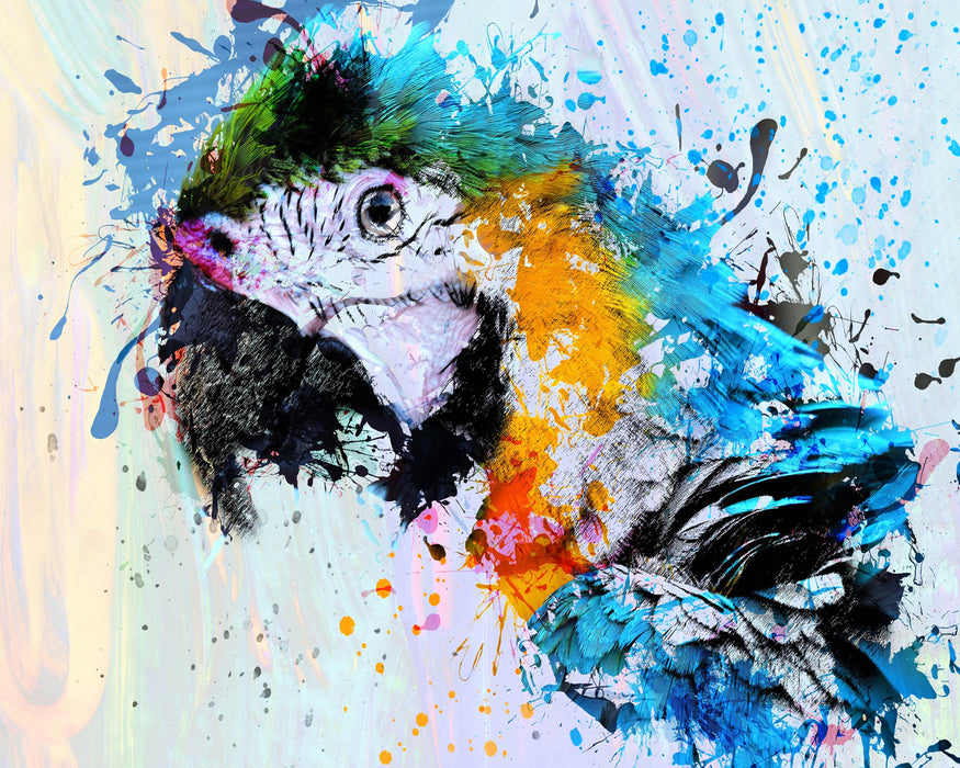 Painted Parrot 1