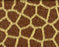 This is a photo (close up shot) of a giraffe fur