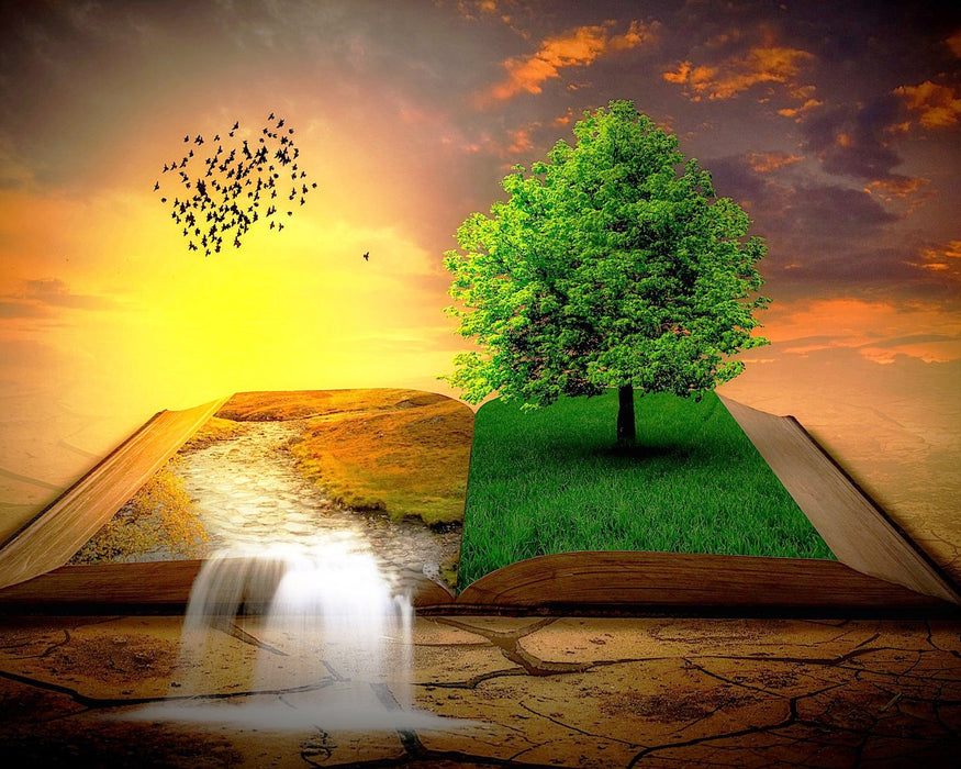 This a photo art of a book parted in the middle with trees and green grass popping and yellow grass and lake on it's pages.
