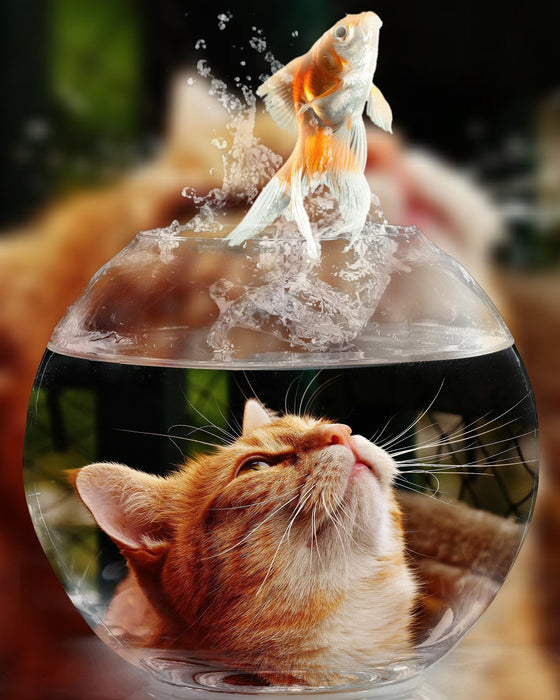 Cat with Fish