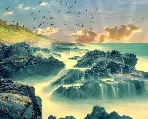 This is a photo of a rocky shore with birds flying