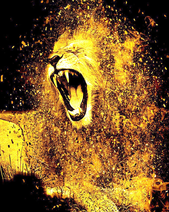 This is an artistic photo of an angry lion