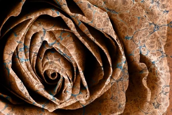 Rose Art - Brown