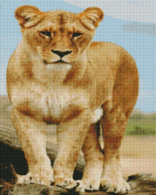 Lady Lion - Shimmer Stitch