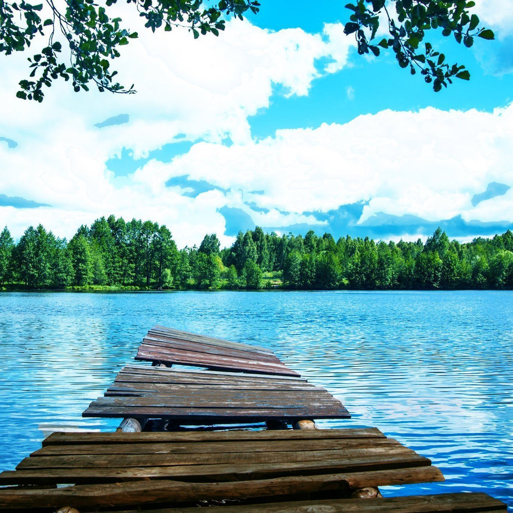 This is a photo of a Lake Dock