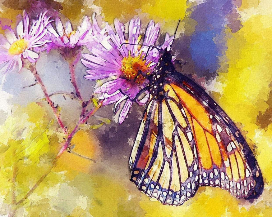 This is a photo of a Painted Butterfly