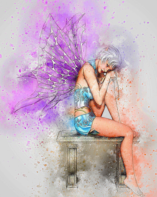 This is a photo of a Painted Fairy
