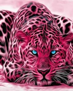 This is a photo of a pink leopard facing the camera.