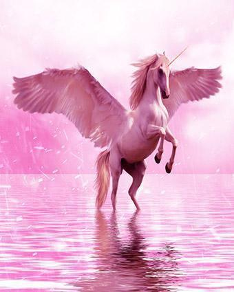 This is a photo of a pink  unicorn on water.