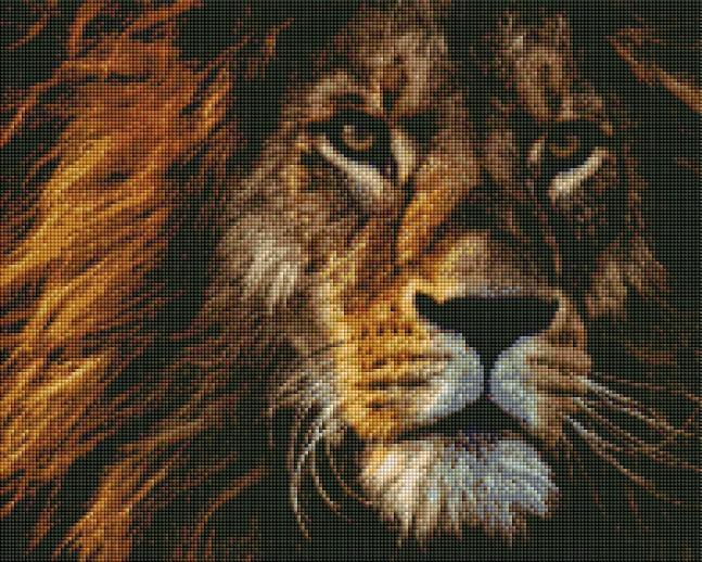 Proud Lion (SQUARE Diamonds) - Shimmer Stitch