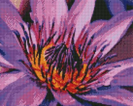 Purple Water Lily (SQUARE Diamonds) - Shimmer Stitch