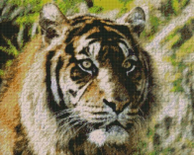 Tiger Painting (SQUARE Diamonds) - Shimmer Stitch