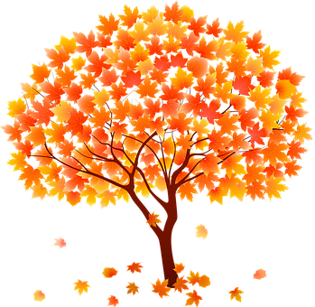 Tree in Fall