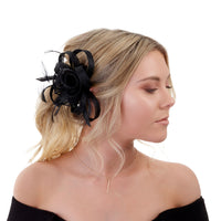 Black Swirl and Feather Clip - link has visual effect only
