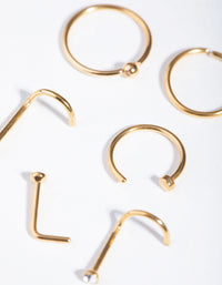 Gold Classic Mix 6-Pack Nose Rings - link has visual effect only