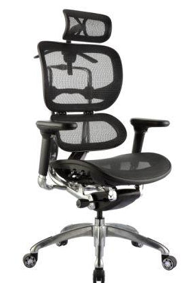 NEW ERGO 1 EXECUTIVE CHAIR WITH HEADREST