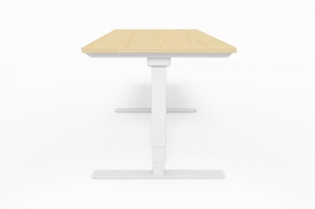 SELECTRIC HEIGHT ADJUSTABLE DESKS